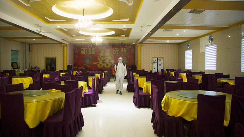 北京市中餐厅饭店-电动喷雾器杀虫灭菌服务案例